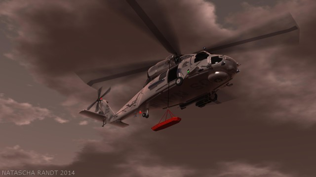 seahawk1