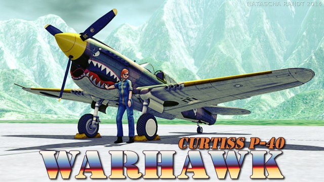 P-40Warhawk 01