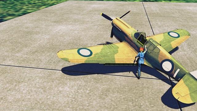 P-40Warhawk 02