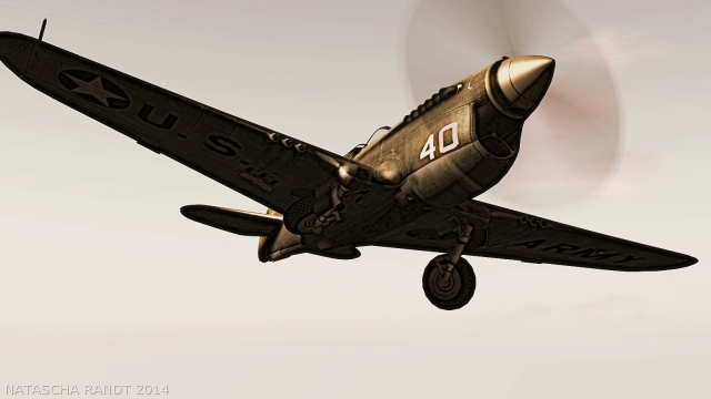 P-40Warhawk 03