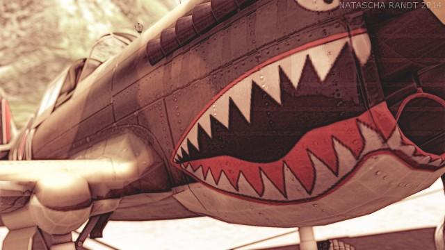 P-40Warhawk 07