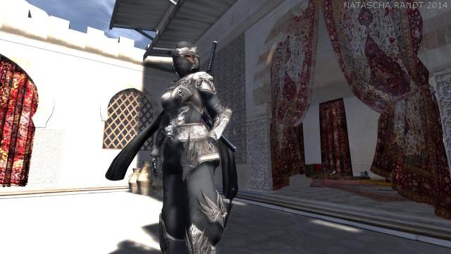 warrior_03a_gfwm