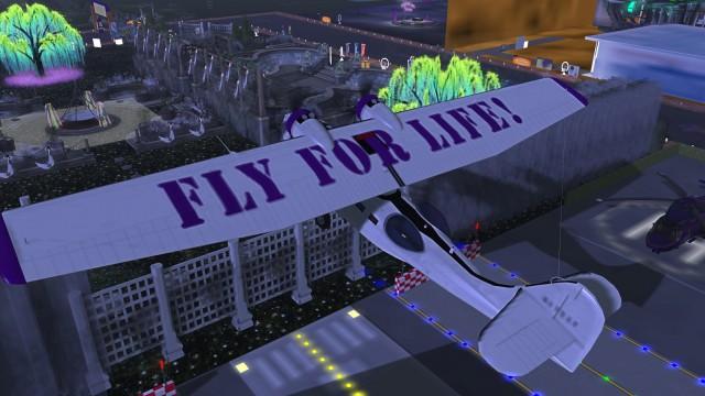 flyforlife2
