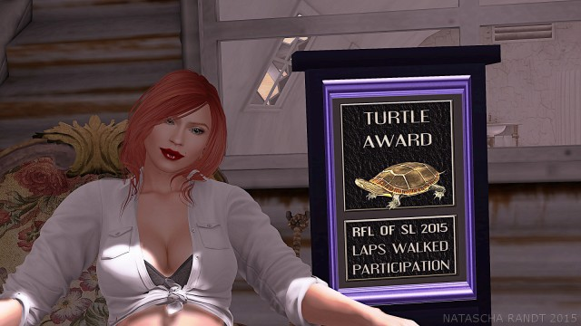 turtleaward2015